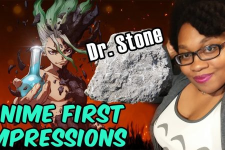 Dr. Stone Anime Review - KittieOnALeash
